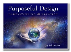 purposeful_design01