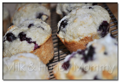 cooling fresh baked blueberry muffins