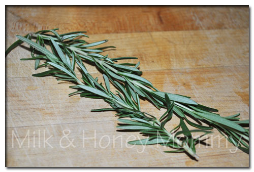 fresh rosemary from my garden