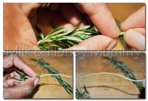 stripping leaves from rosemary