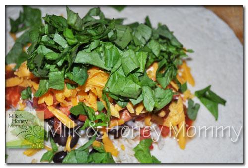 fresh spinach burrito